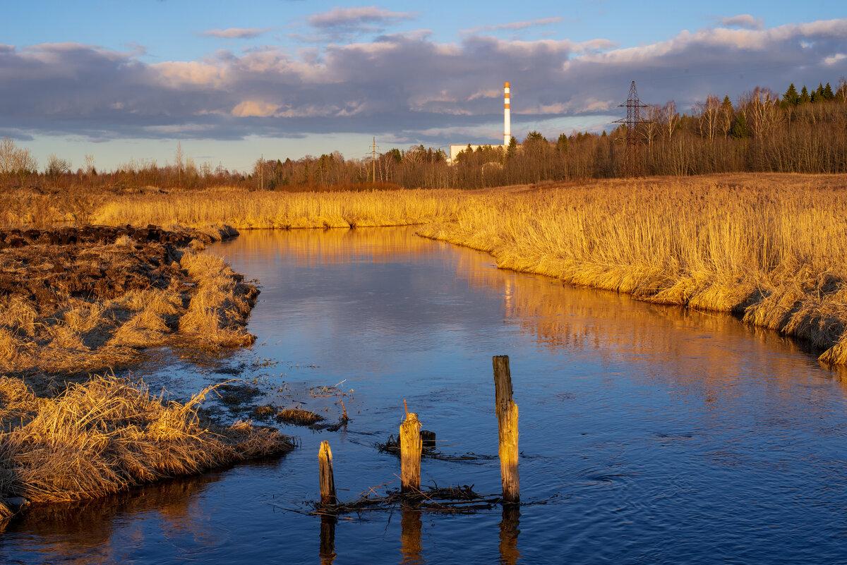 В Гатчине впервые за 50 лет проведут чистку рек и озёр