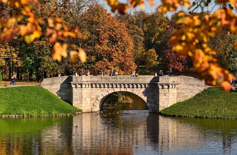 Петербуржцы проголосовали за лучшие парки для прогулок осенью