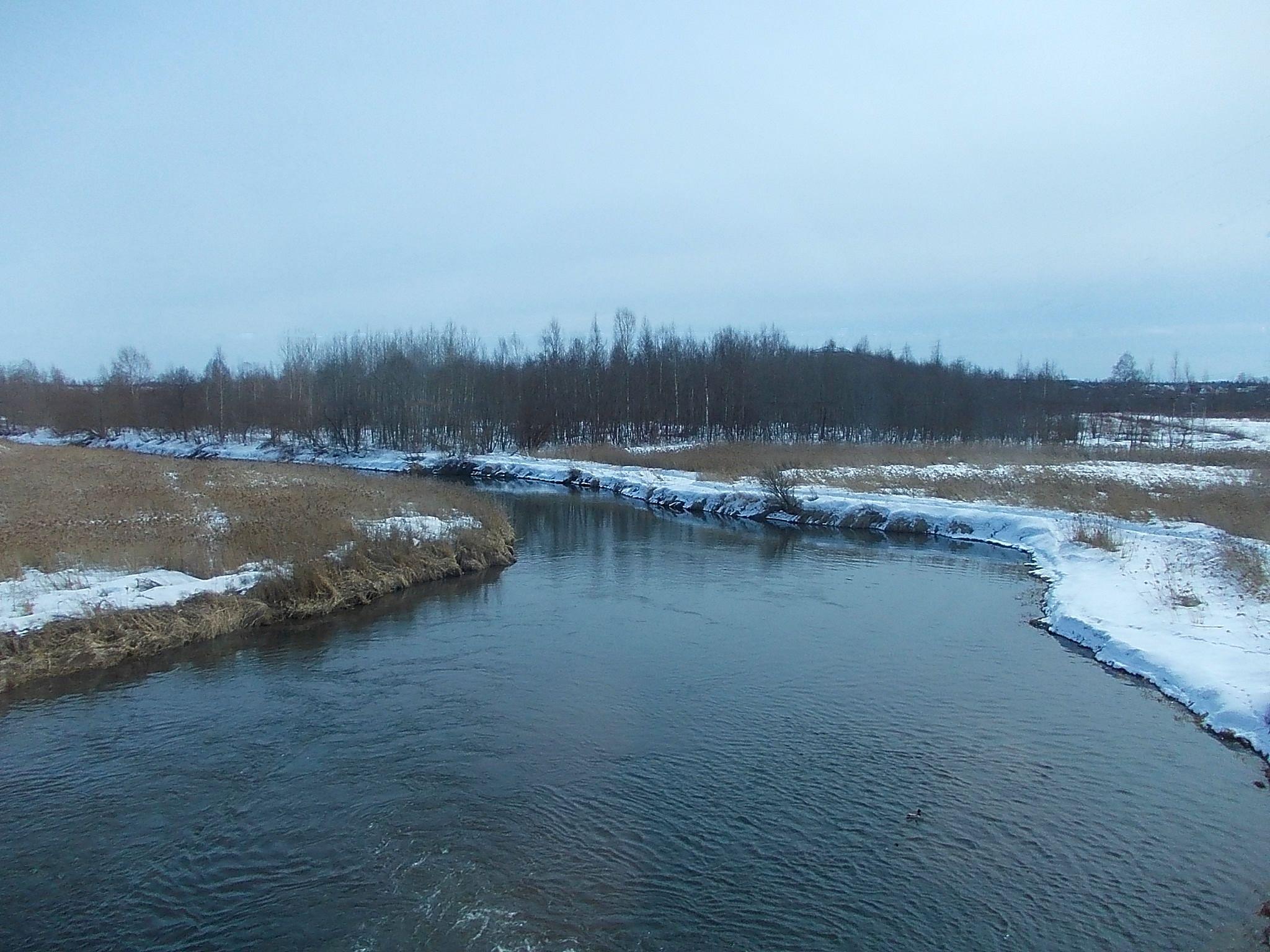 Компания «Коммунальные системы Гатчинского района» выплатит 6 075 000 рулей за загрязнение реки Ижора