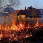 С 31 марта по 4 апреля в Гатчинском районе произошло 11 пожаров