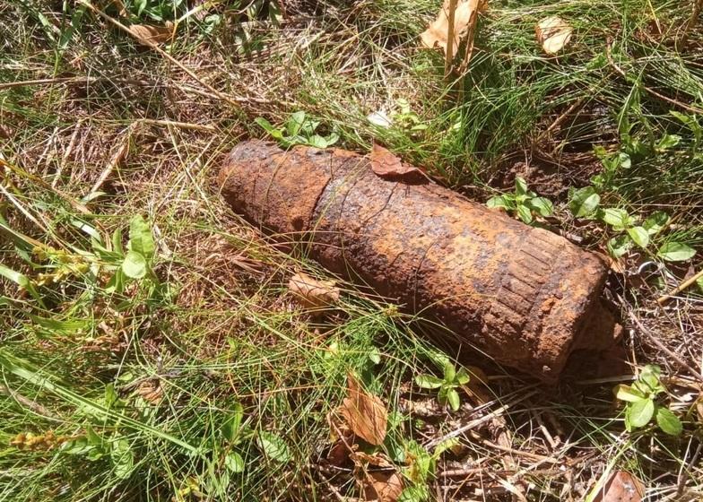 снаряд под гатчиной в лесу