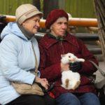 Бесплатное посещение Ленинградского зоопарка для пенсионеров