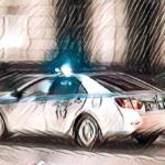 19-летний парень похитил девушку в Вырице